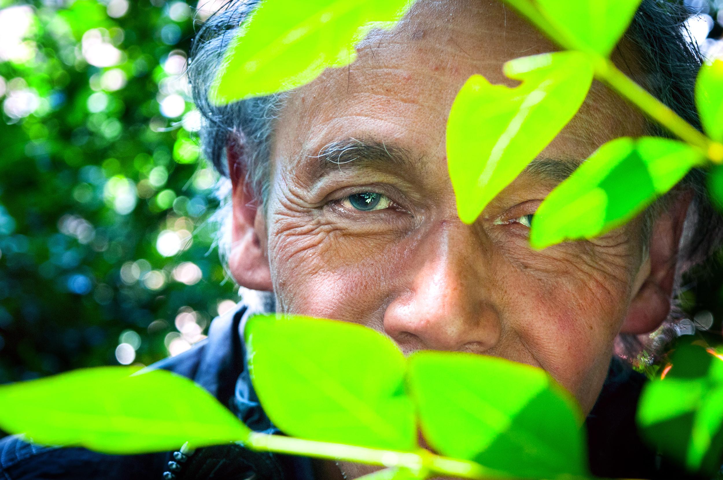 De bladeren zijn mijn huis de regenboog groep - Coulissan deur je dressing bladeren ...